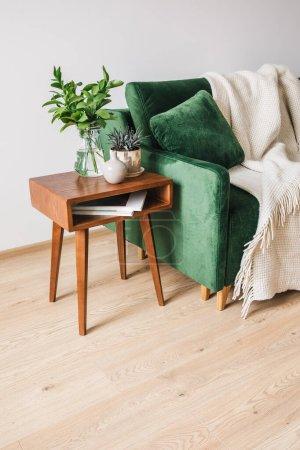 Foto de Sofá verde con almohada y manta cerca de la mesa de centro de madera con plantas - Imagen libre de derechos