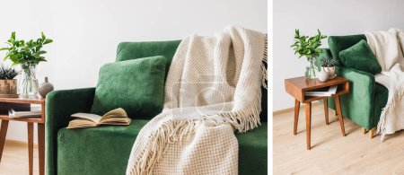 Photo for Collage of green sofa with pillow, book and blanket near wooden coffee table with plants - Royalty Free Image
