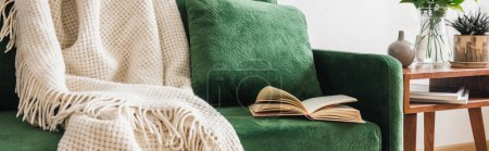 Photo for Close up view of green sofa with pillow, book and blanket near wooden coffee table with plants, panoramic shot - Royalty Free Image