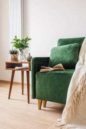 Photo pour Canapé vert avec oreiller, livre et couverture près d'une table basse en bois avec plantes - image libre de droit