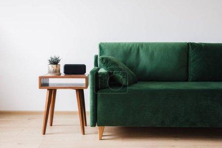 Foto de Sofá verde con almohadas y mesita de café de madera con planta y despertador. - Imagen libre de derechos