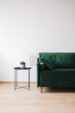 green sofa with pillow and coffee table with houseplant