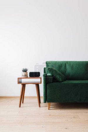 green sofa with pillow and wooden coffee table with plant and alarm clock