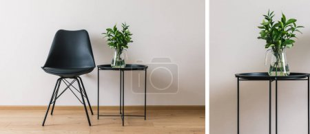 Photo for Collage of black coffee table with green plant near modern chair - Royalty Free Image