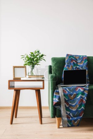 green sofa with blanket and laptop near wooden coffee table with green plant, books and photo frame