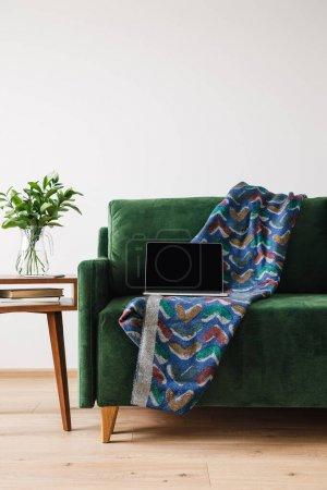 Photo pour Canapé vert avec couverture et ordinateur portable près d'une table basse en bois avec plante verte - image libre de droit
