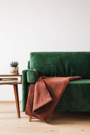 Photo for Green sofa with blanket near wooden coffee table with plant and books - Royalty Free Image
