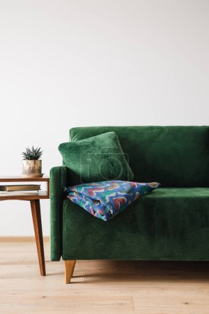 green sofa with blanket near wooden coffee table with plant and books
