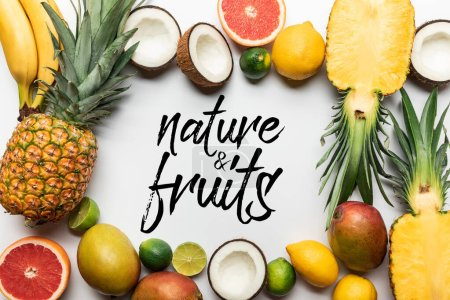 Photo for Frame made of organic exotic fruits on white background with nature and fruits illustration - Royalty Free Image