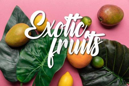 Photo pour Vue de dessus d'agrumes tropicaux mûrs entiers et mangue avec des feuilles vertes sur fond rose avec illustration de fruits exotiques - image libre de droit