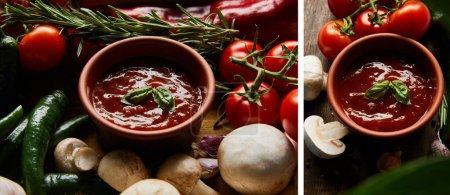 Collage aus köstlicher Tomatensauce in Schüssel in der Nähe von frischem reifem Gemüse, Rosmarin und Pilzen