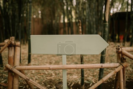 Arrow pointing to the right in nature