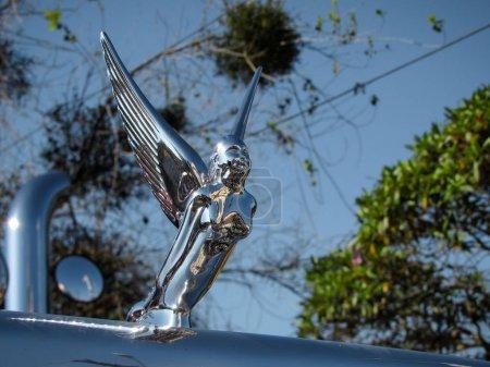 Truck Hood Ornament