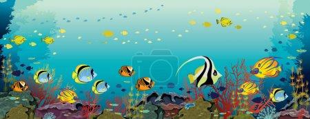 Escuela de peces tropicales y arrecifes de coral sobre un fondo marino azul. Ilustración panorámica del océano vectorial. Naturaleza submarina y fauna marina .