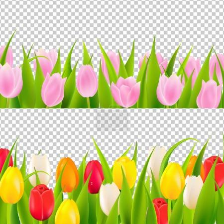 Illustration for Tulip color flowers Background With Gradient Mesh, Vector Illustration - Royalty Free Image