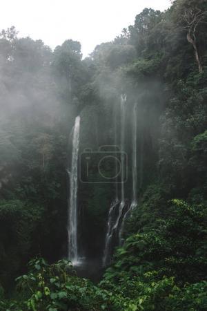 waterfall in jungle in Bali