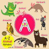 Cute children zoo alphabet A letter tracing of funny animal cartoon for kids learning English vocabulary vector illustration
