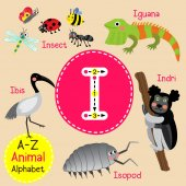 Cute children zoo alphabet I letter tracing of funny animal cartoon for kids learning English vocabulary vector illustration