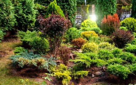 Photo pour Rockery dans le jardin avec des pierres et une variété de fleurs et de plantes différentes. Concentration sélective . - image libre de droit