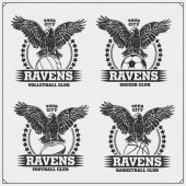 Volleyball baseball soccer and football logos and labels Sport club emblems with raven