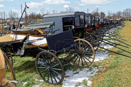 Amish Carriages For Sale at Auction