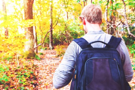 Photo for Man walking on a forest path in autumn - Royalty Free Image