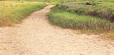 Sandy pathway trail