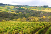 Beautiful Tuscany landscape of vineyard and hills in autumn, Chianti, Italy