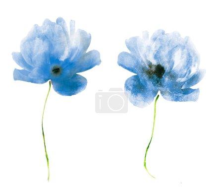 Photo pour Fleurs aquarelles, isolées sur fond blanc - image libre de droit