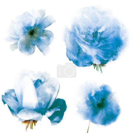 Photo for Watercolor natural set on white background - Royalty Free Image