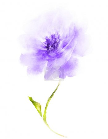 Photo for Watercolor flower , isolated on white background - Royalty Free Image