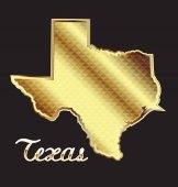 Gold texas state map logo vector