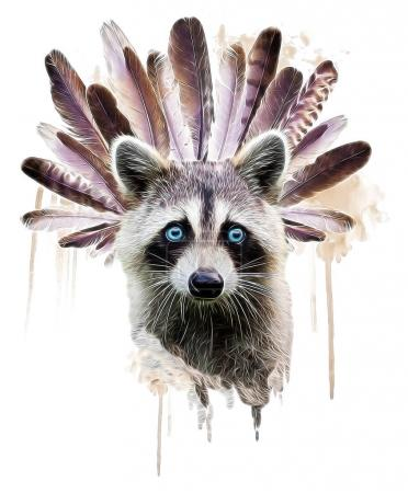 Face of a white raccoon