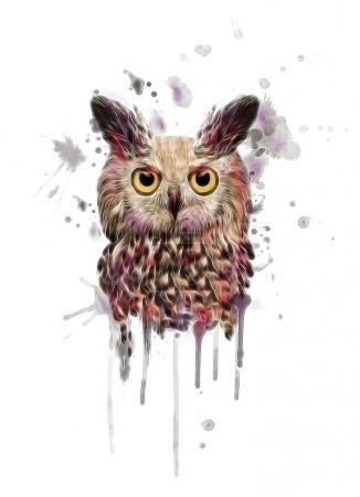 Watercolor owl print