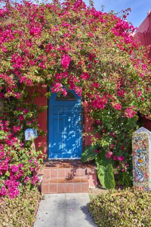 bougainvillea hedge taking over entrance of historic residence