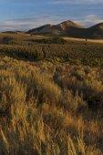 """Постер, картина, фотообои """"идиллический закат пейзаж с травы луговые и далекие горы"""""""