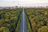 Highway between green trees in Berlin