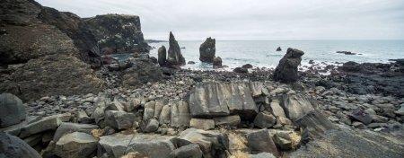 Paysage islandais du littoral rocheux