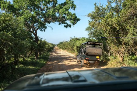 Safari jeep tour on Sri Lanka