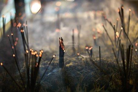 Aroma sticks inside buddhist temple