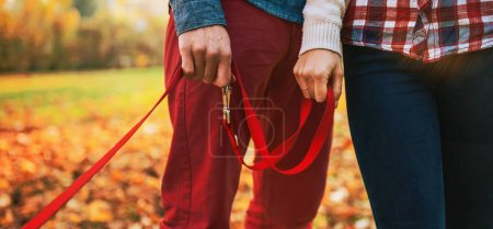 Close up on two hands of romantic couple holding dogs lead outside in autumn day