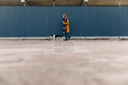 Photo for Side view of young stylish woman walking on street together with puppy - Royalty Free Image
