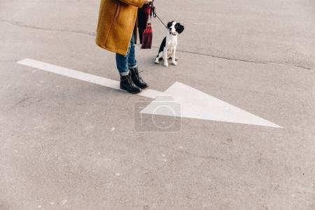 cropped shot of woman standing on street together with puppy
