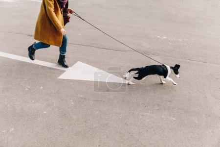 cropped shot of woman walking on street together with puppy