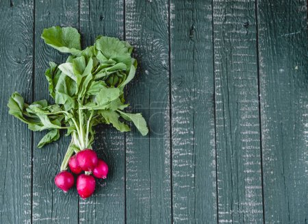 Photo for Bundle of fresh radishes with haulm on green wooden background - Royalty Free Image
