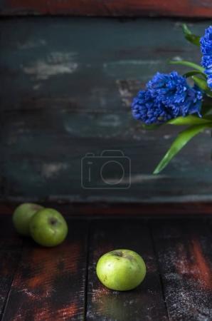 Blue hyacinths flowers in brown pot