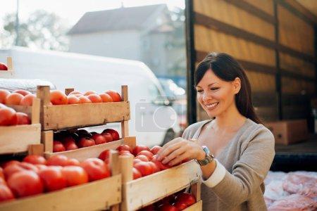woman choosing tomatoes.