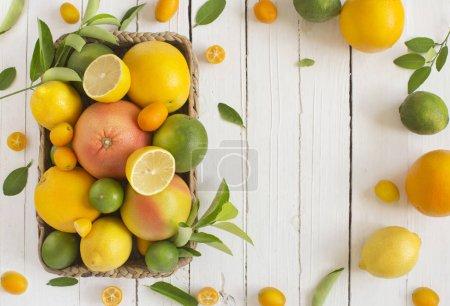Photo pour Différents agrumes frais dans le panier sur une surface en bois blanche - image libre de droit