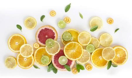 Photo for Different halved fresh citrus fruits with leaves on white background - Royalty Free Image