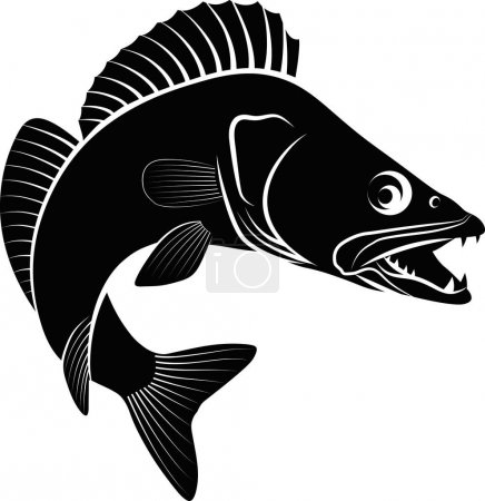 Clip art illustration of zander fish...